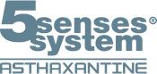 5Senses System Logo-int