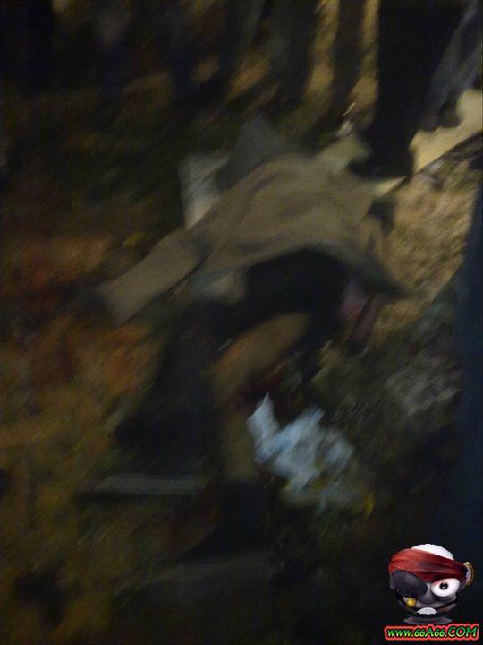 صور تفجيرات اسكندرية + فيديو Domain-f0056d49ce
