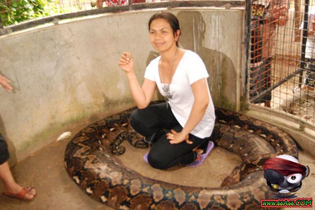 صور البنت اللي تحدى الثعابين وصور غريبة 2011 66a66-bf36b8050c