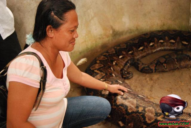 صور البنت اللي تحدى الثعابين وصور غريبة 2011 66a66-e628c2220f