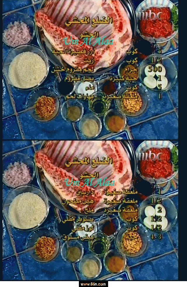 اكلات رئيسيه من مطبخ منال العالم mbc J20d5n4j7yh37m8rqlzewt1fqc0tgh16
