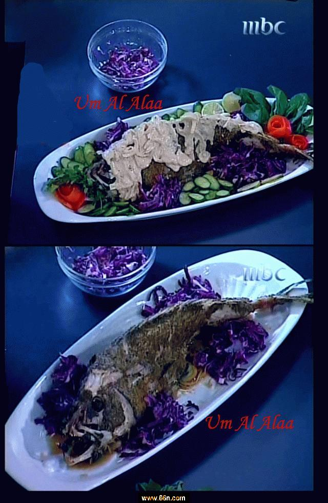 اكلات رئيسيه من مطبخ منال العالم mbc L346hscsm0m90mja33ciddqdat5rt0g5