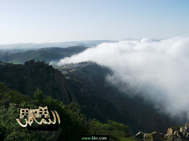 مدينه سعوديه تنافس اوروبا بجمال طبيعتها Q4s3tus6oseltar6gxmpt3dh40g6l3kh