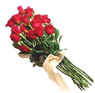 تواضع الورد 45061