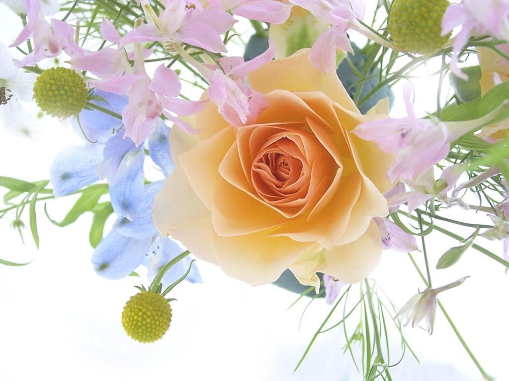 С Днём Рождения! - Страница 20 Flowers