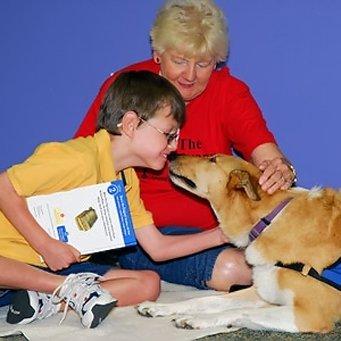 Как собаки излечивают от аутизма. 98ab1e37afb813d4a416c615cbf92b3e