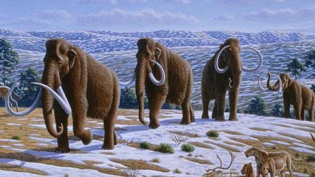 Prehistoria en la península ibérica Mamut--644x362