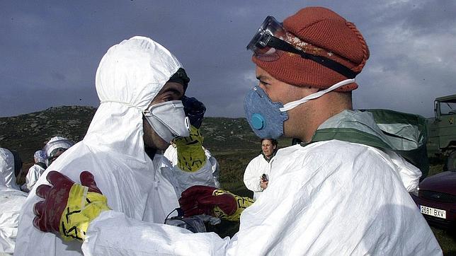 La inhalación del fuel del Prestige provoca daño a corto plazo en el ADN  Limpieza-prestige-adn--644x362