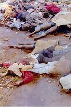 Ruanda. Auge de los negocios. 5-genocidio-ruanda-hutus-tutsis--146x220