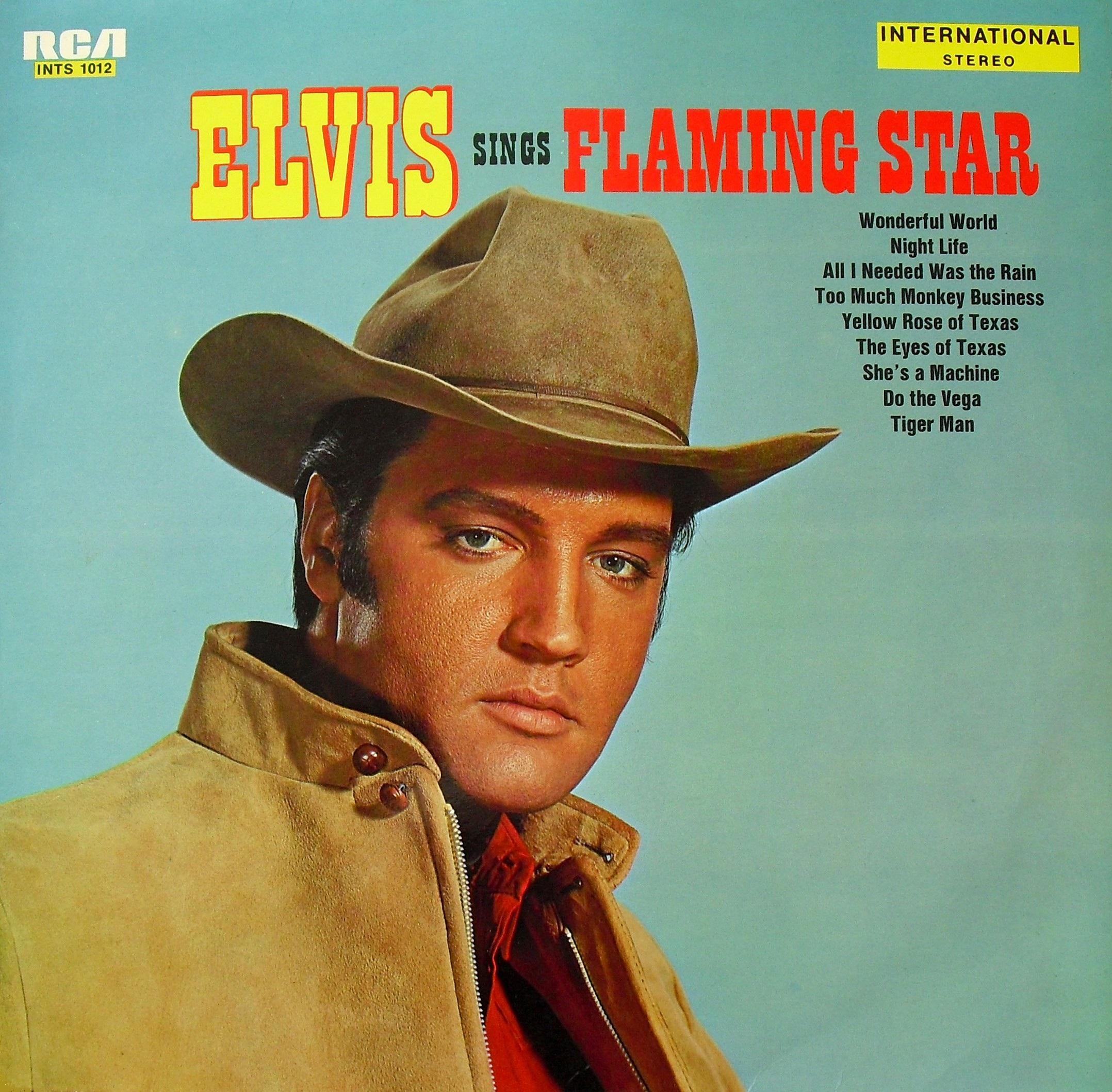 ELVIS SINGS FLAMING STAR 007t6u04