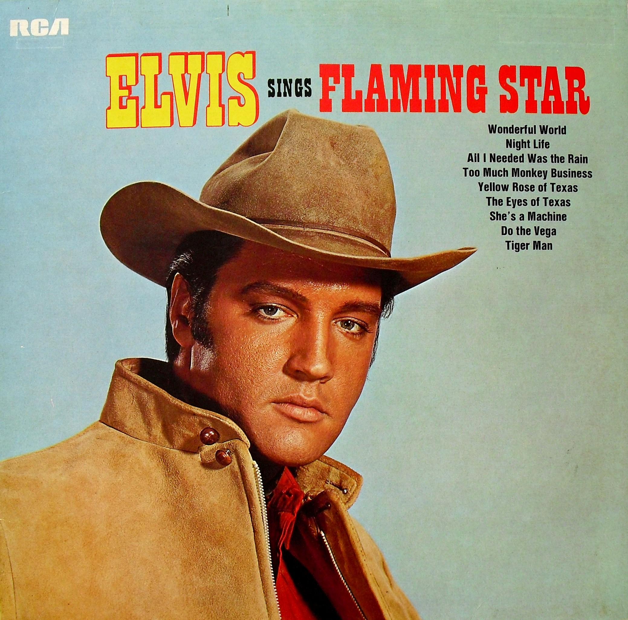 ELVIS SINGS FLAMING STAR 011exum2