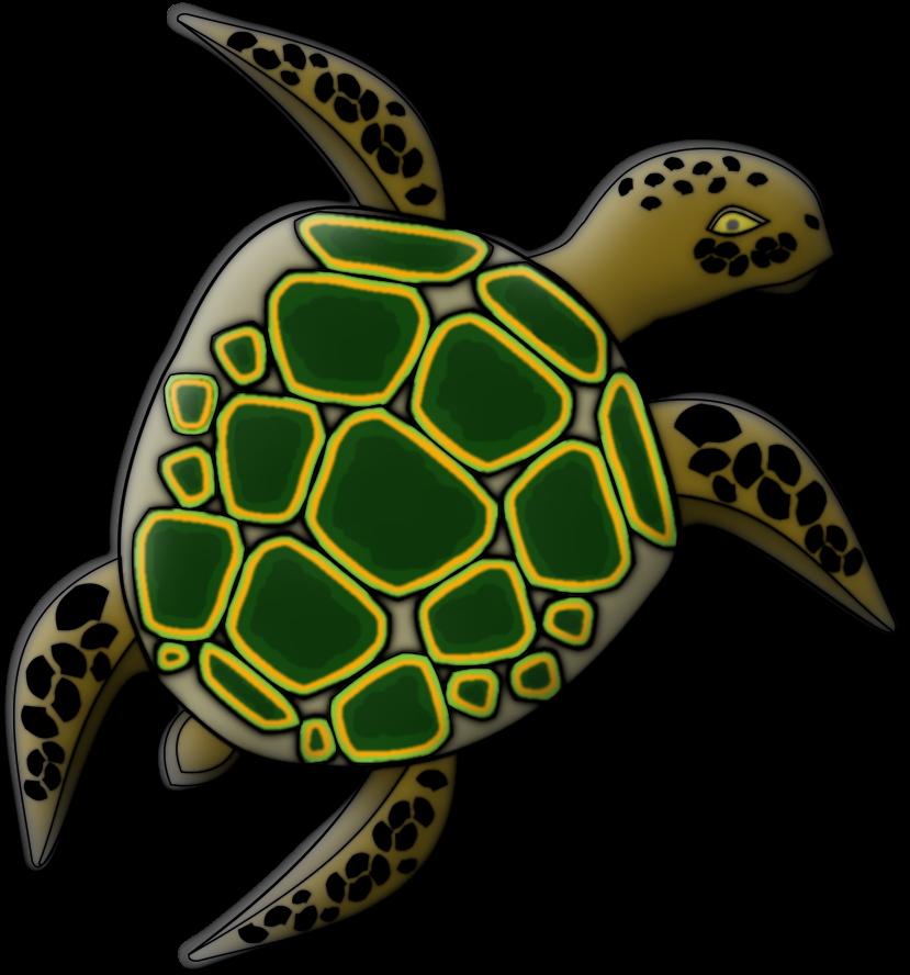 Schildkröte colorieren Umfrage  Contest-krte-fertig4rst