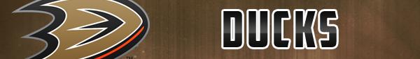 Playoffs 2015 - Seite 5 Duckskopieuhlp4