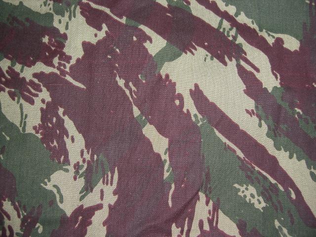 """Portugese """"Vertical"""" Lizard Pattern Forum017bsnc"""