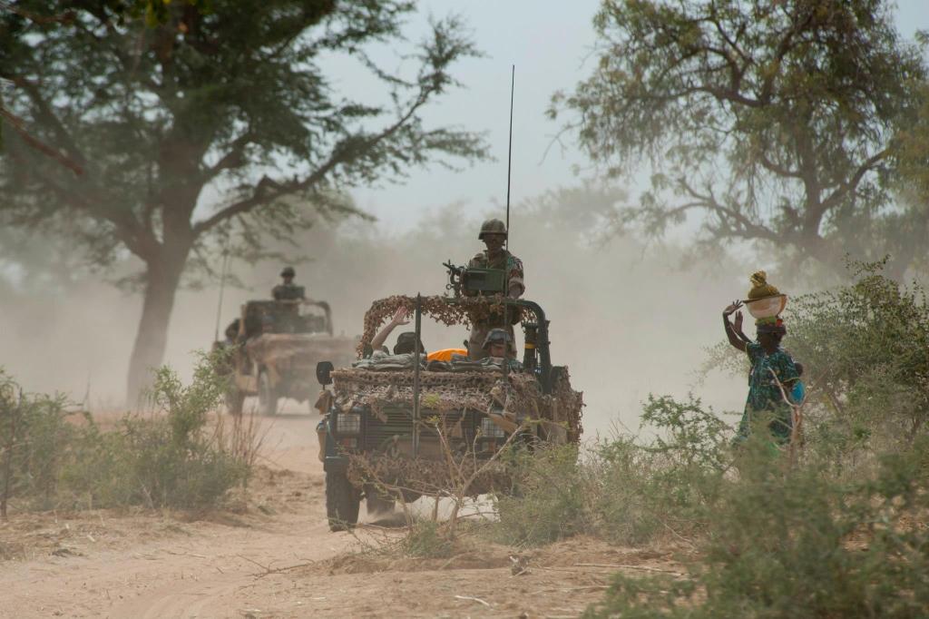 armée de terre Mali11172spw