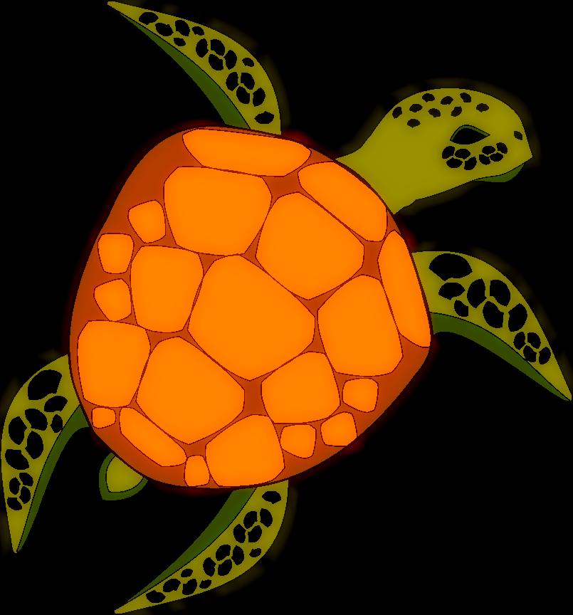 Schildkröte colorieren Umfrage  Schildkrte3asi