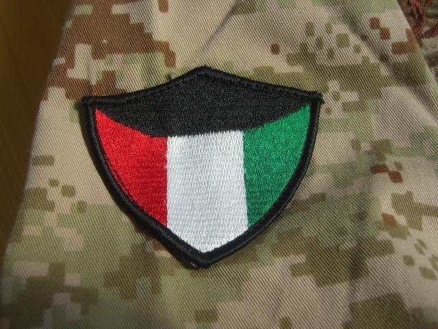 Current Army digital camo Y0094akg