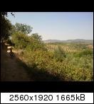 Motorizar un remolque de bici - Página 2 Foto0408ucy6l