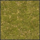 Kreuzung - Texturen verdunkelt InGame - Seite 2 Grass0059_5_s5ajxx