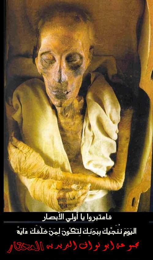 صورة فرعون موسى عليه لعنة الله. Fer3on