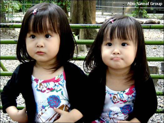 صور اطفال توأم Twin1