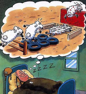 Nel segno del buonumore - Pagina 5 Vignettiamo05112013