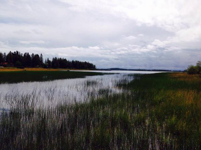 Retour d'un mois en Suède... Août 2016 6595-1474054137
