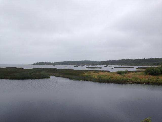 Retour d'un mois en Suède... Août 2016 6595-1474057907