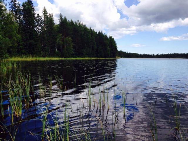 Retour d'un mois en Suède... Août 2016 6595-1474058346