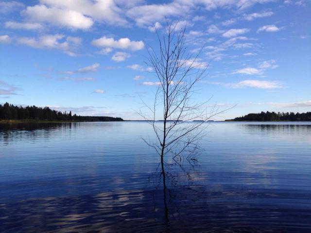 Retour d'un mois en Suède... Août 2016 6595-1474058904