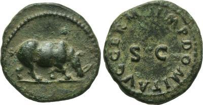 Cuadrante de Domiciano. Rinoceronte. Roma. 1873027.m