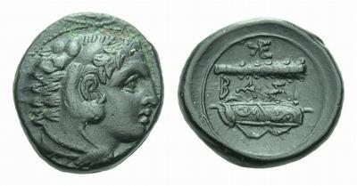 Hemilitra de Sicilia. 2078904.m