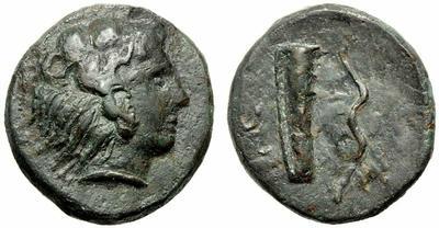 Hemilitra de Sicilia. 1160993.m