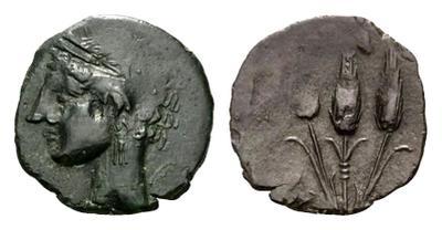 AE16 de Cesarea-Iol. 3 Espigas. (Mauritania) 1860029.m