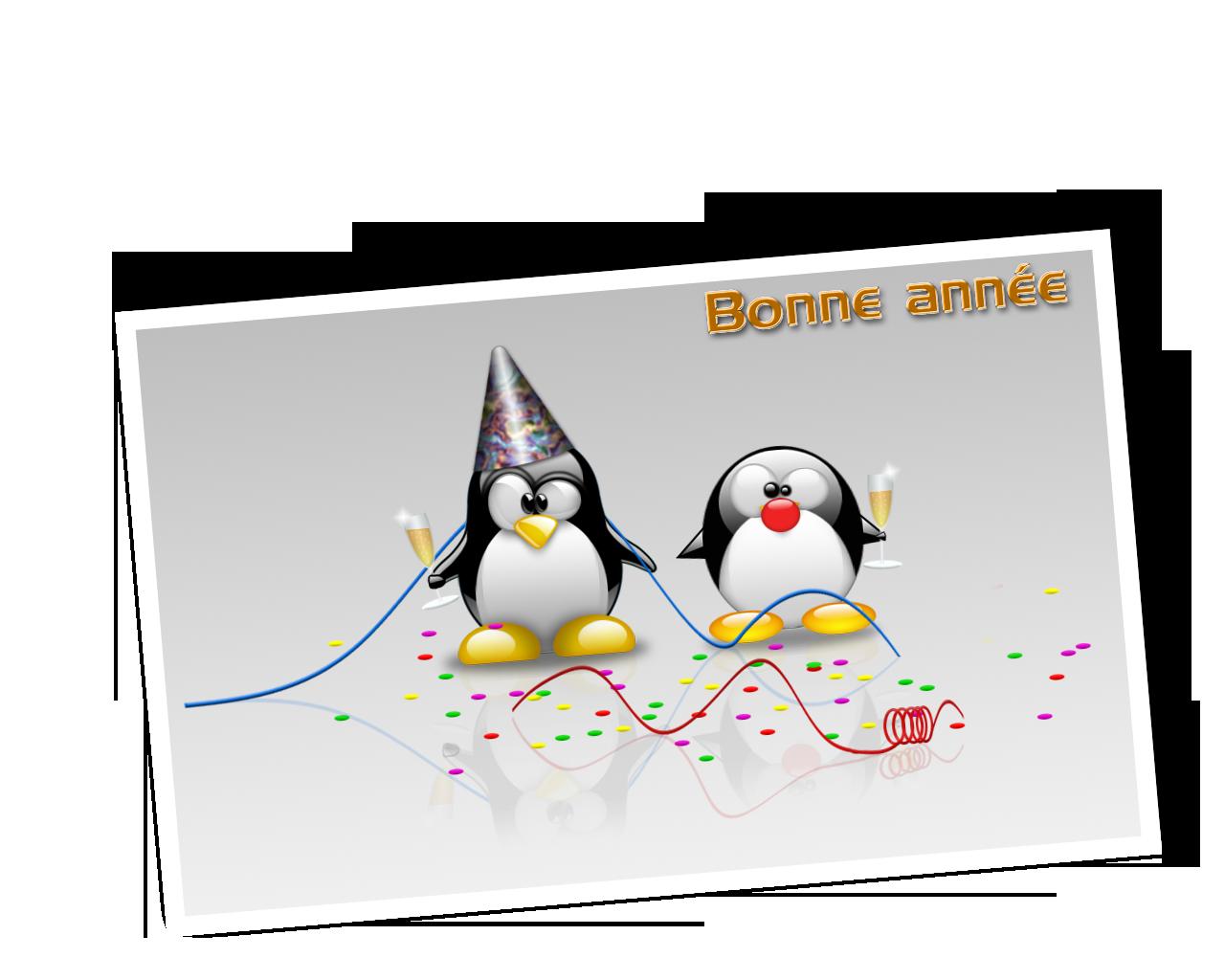 BONNE ANNEE LES FILLES 1325893078273717