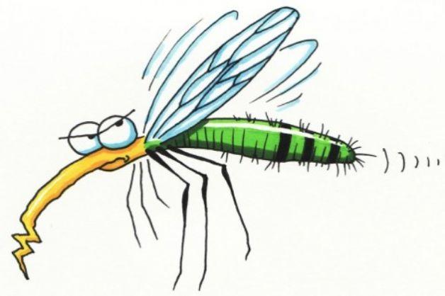 Cazzeggio!!! - Pagina 6 Proteggere-i-bambini-dalle-zanzare