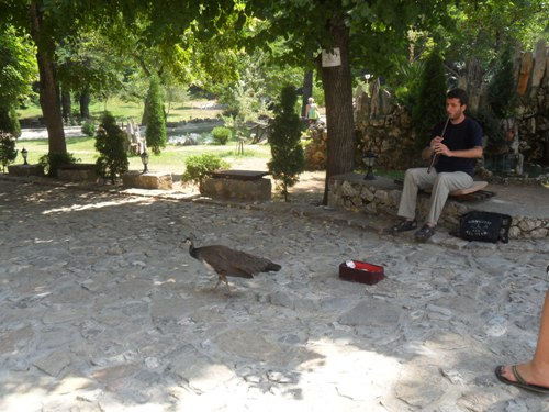 Makedonija Ohrid3