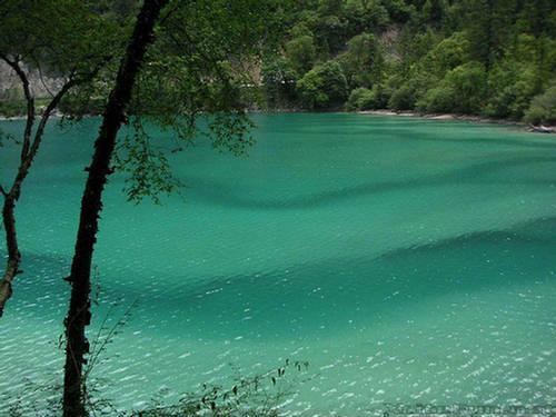 Jezera Pet-cvetova-jezero