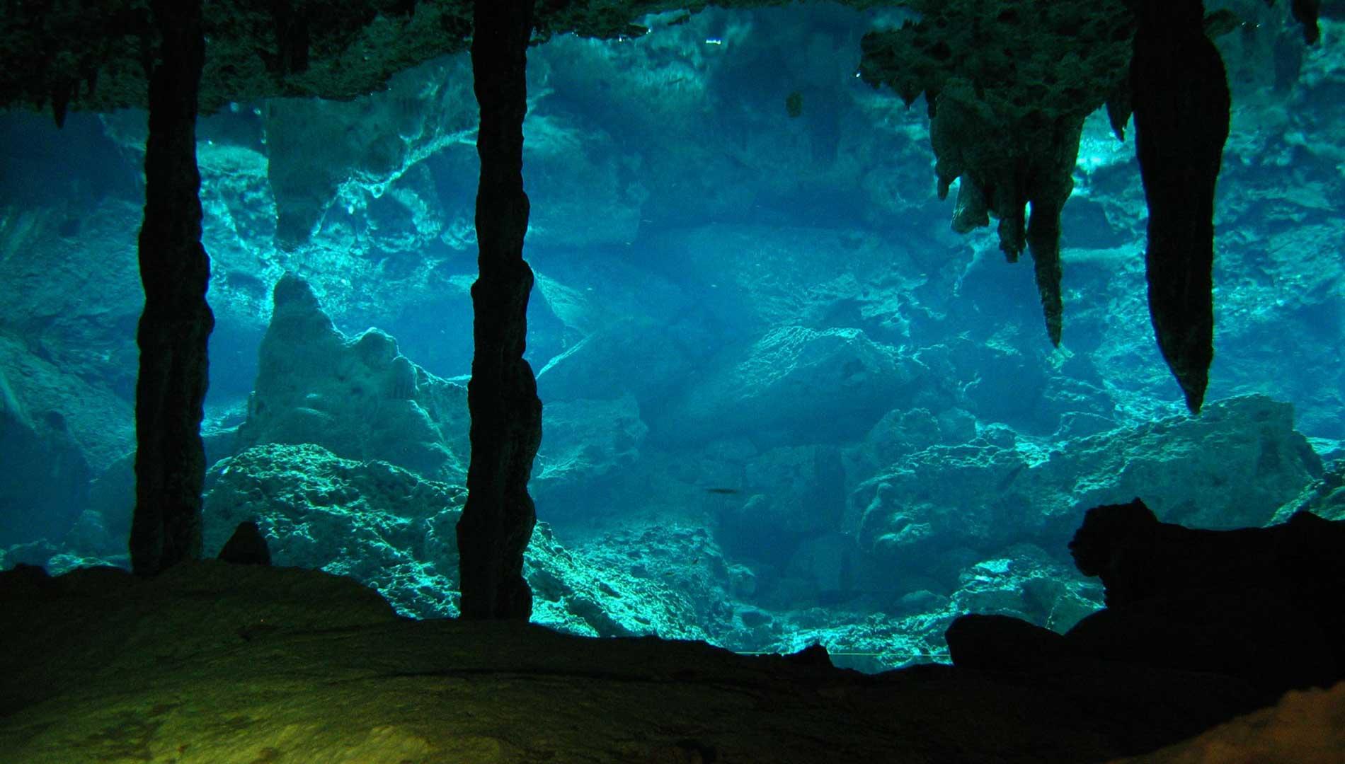 [Bazilia] La magie des océans [PV. Tempest] Cenote2OjosATCScubaDiving