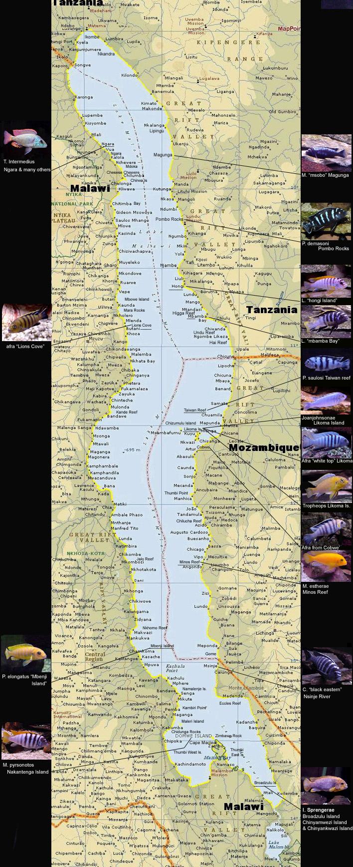 Mapa do Lago Malawi BigLakeMalawi3