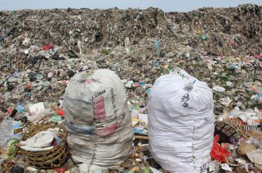 Unos 8.300 millones de toneladas de plástico circulan por el mundo Unos-8.300-millones-de-toneladas-de-plastico-circulan-por-el-mundo_image_380