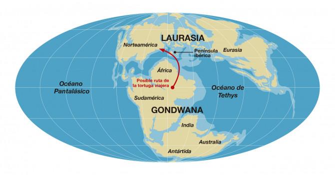 El increíble viaje de la primera tortuga africana que llegó a Europa Mapa-Gondwana-Laurasia-160-millones-de-an-os_image671_405