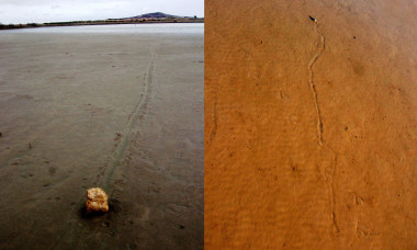 Tormentas y microbios están detrás del misterio de las piedras errantes Tormentas-y-microbios-estan-detras-del-misterio-de-las-piedras-errantes_image_380