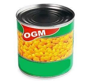 علوم الحياة والأرض: التربية الغذائي Ogm-5