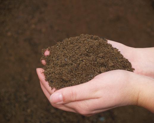 Offrande aux Gnomes Melange-terre-vegetale-sable-et-compost-327e