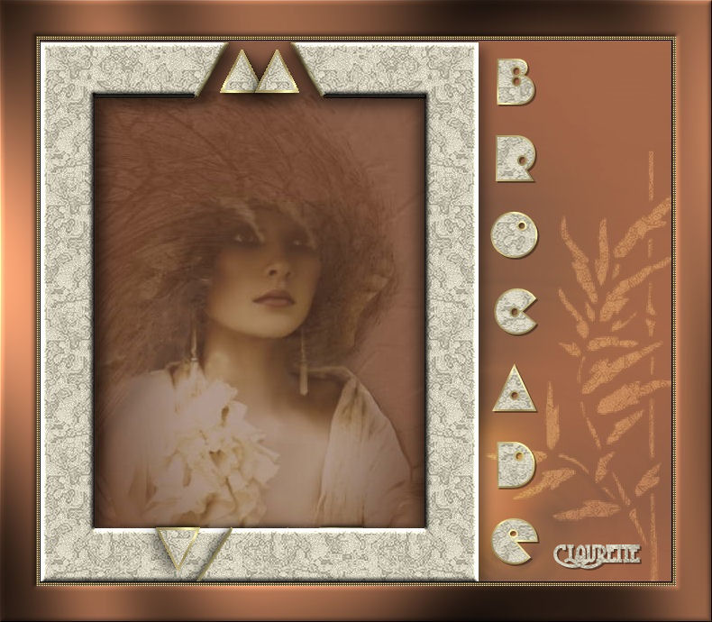 14-Cours Psp-Cadre brocade Lecon_canelle_brocade