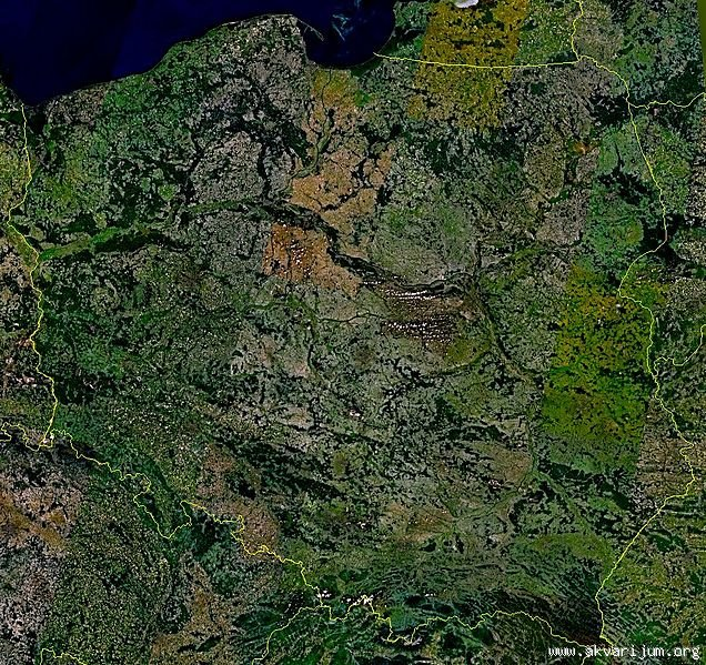 Poljska _227253840_636px-Poland-satellite