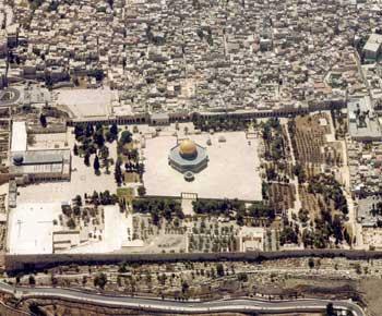 فلسطين إسطورة يكتبها التاريخ 22-4aa4ea30c0c22