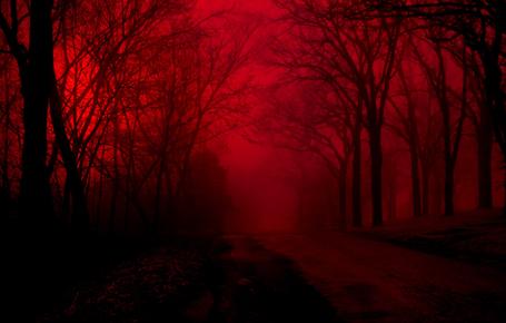 NOITE ALUCINANTE Noite_alucinante