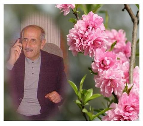 المؤرخ الدكتور / كمال مظهر أحمد       Kamal.M.Ah.5